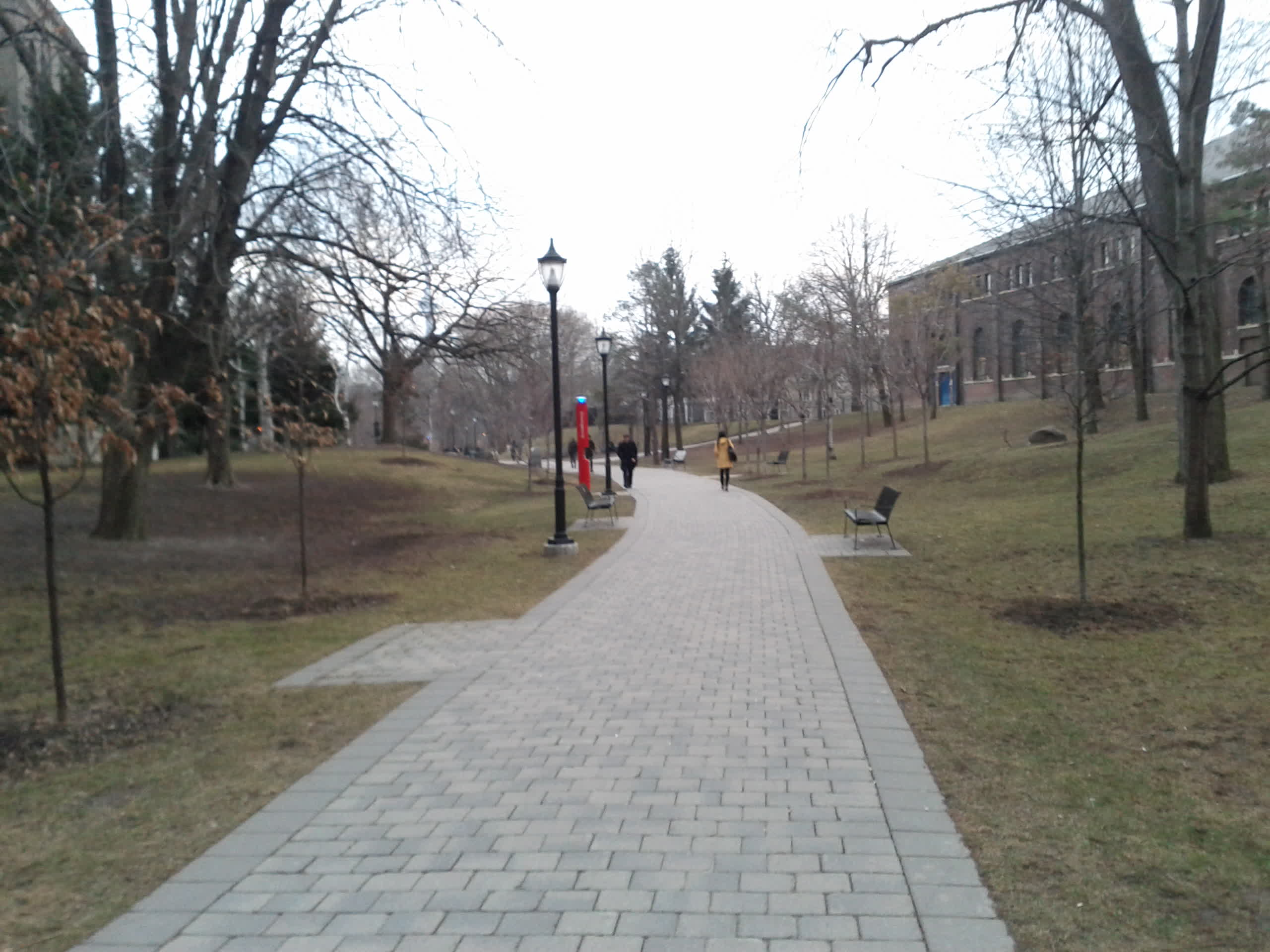 This is a scenic walkway at U of T's downtown campus. I think it's called Philosopher's Walk.
